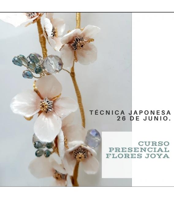 CURSO PRESENCIAL FLORES JOYA 26 DE JUNIO